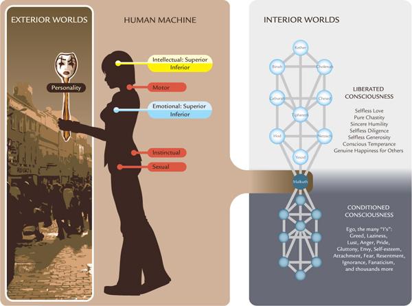 centrii masinii umane